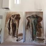 ELEPHANTS NON FINALISES