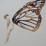 enfant-papillon-brou-de-noix