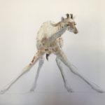 girafon-aquarelle-sur-papier-147x-127cm-2017