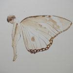 enfant-papillon